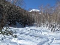 Konsei-no-mori snowshoeing course