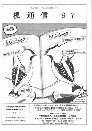 楓通信097号