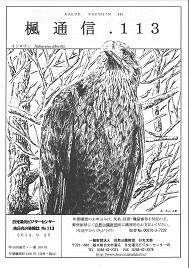 楓通信113号      日本で見られるワシ