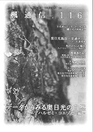 楓通信116号      奥日光セミ特集
