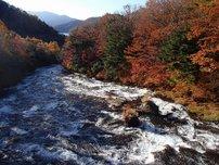 竜頭ノ滝(滝上)の写真