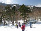 冬の森スノーシュー散策