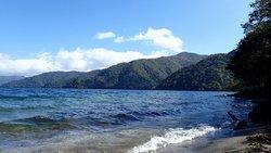 夏だ!湖だ!長距離だ!中禅寺湖南岸ハイキング!!!