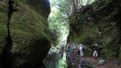 苔の回廊・御沢金剛峡探検第1回