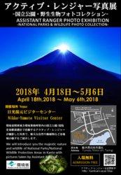 アクティブレンジャー写真展開催中!【4/18~5/6】