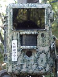 【10月1日~11月30日】企画展「カメラに写ったケモノたち」開催のお知らせ