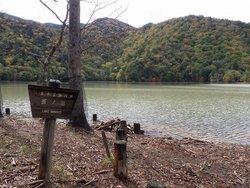 【10/12】千手の森自然情報