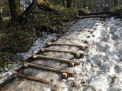 【4/18】 湯滝~小滝間の周回コース歩道状況