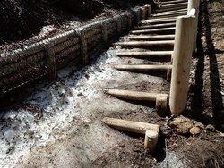 【4/24】湯滝~小滝間の周回コース歩道状況