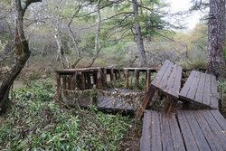 【10/24】Information about hiking trails after the typhoon