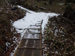 【4/12】湯滝~小滝間の周回コース 自然情報