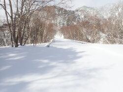 【1/31】石楠花平コース ルート状況